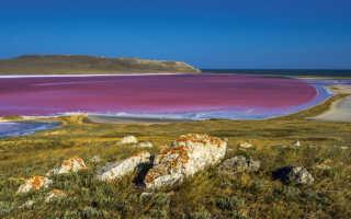 Розовое озеро в Крыму — целебные свойства водоёма