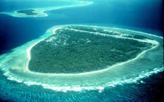 Хозяйственное значение Тихого океана