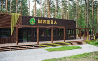 База отдыха Шишка