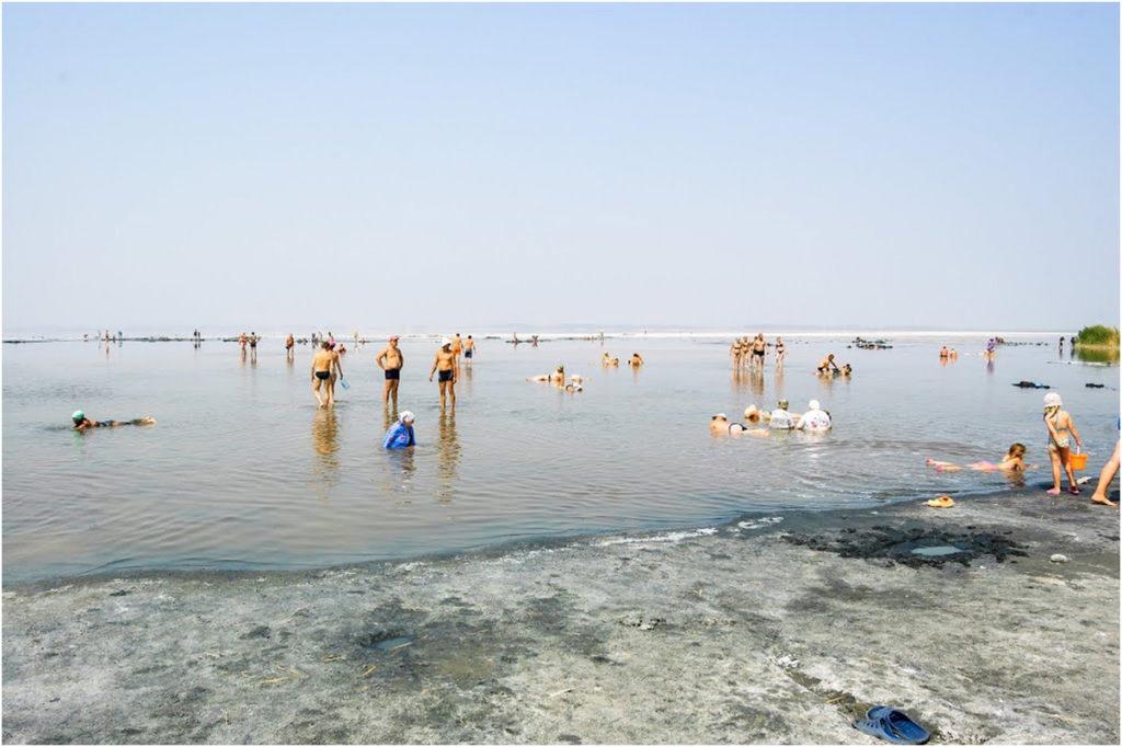 Соленое озеро Алтай