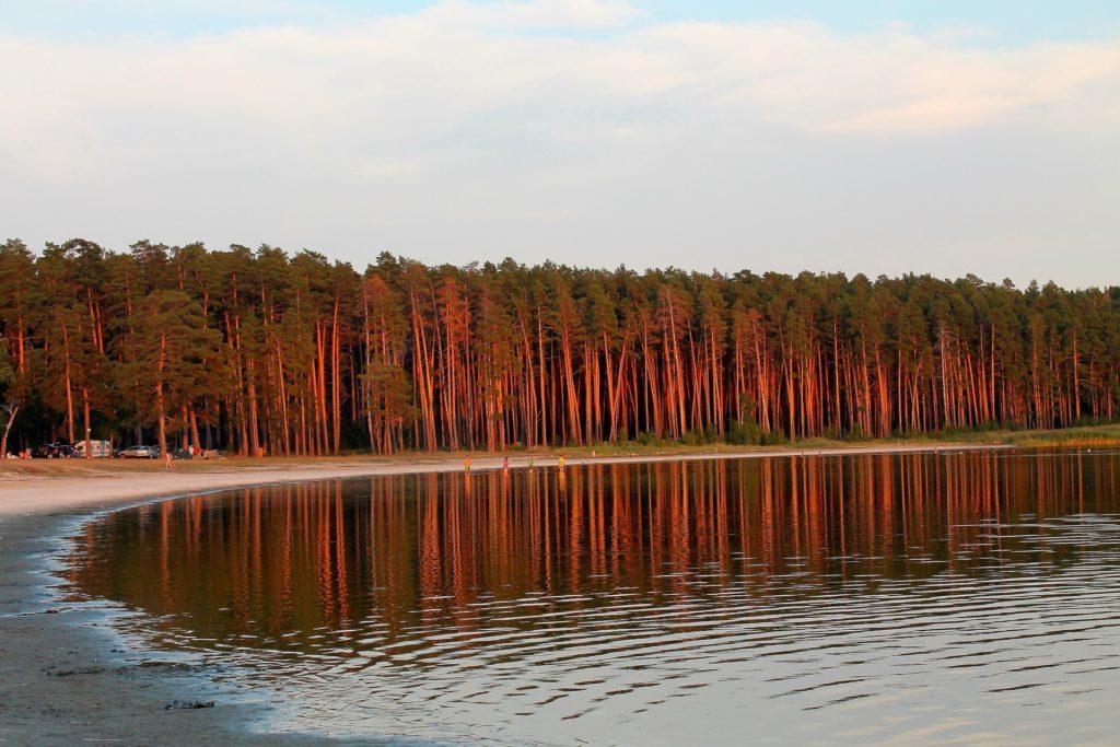 Мормышанское озеро Алтай