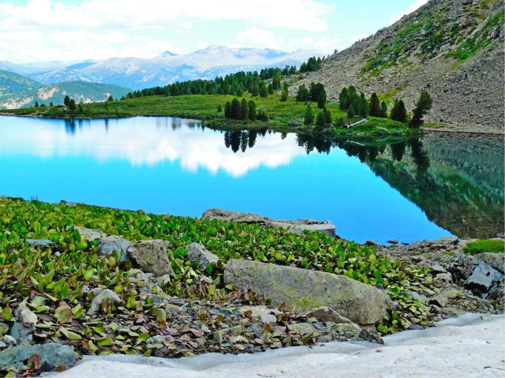 Озеро Манас Алтай