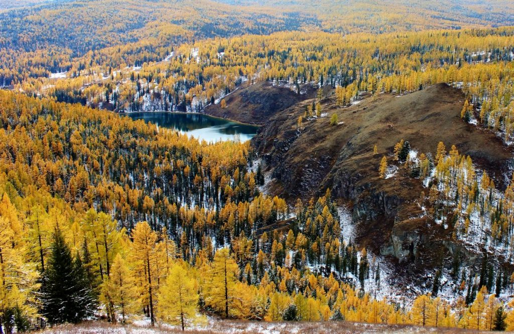 Мертвое озеро Алтайский край