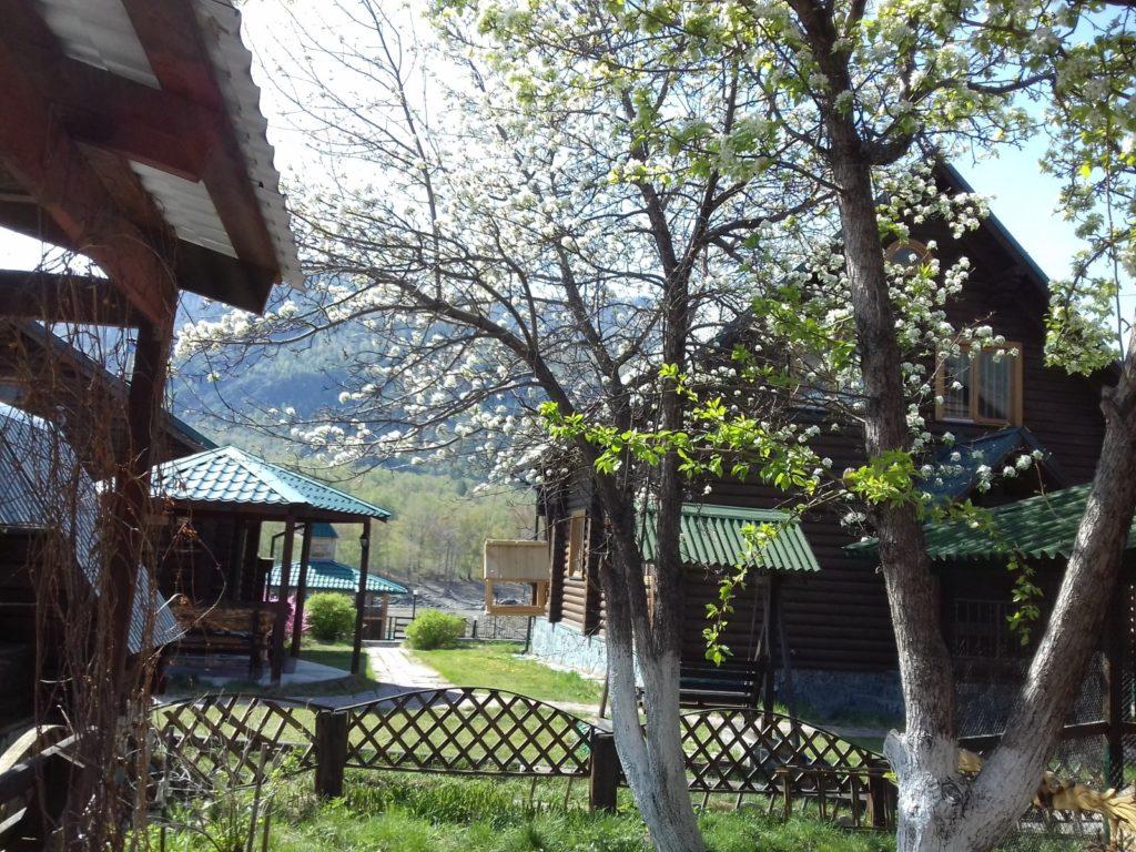Чемальский рассвет домики