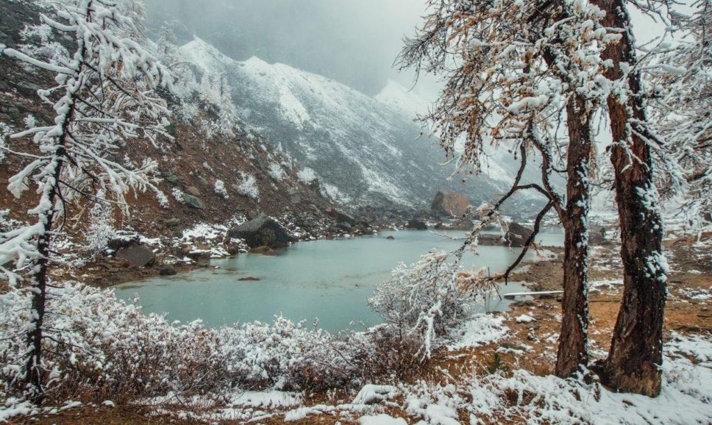 Алтай декабрь