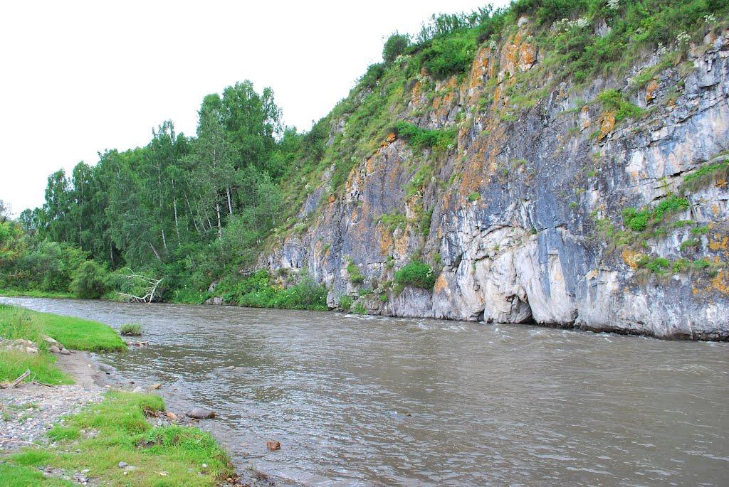 Река ануй Алтай