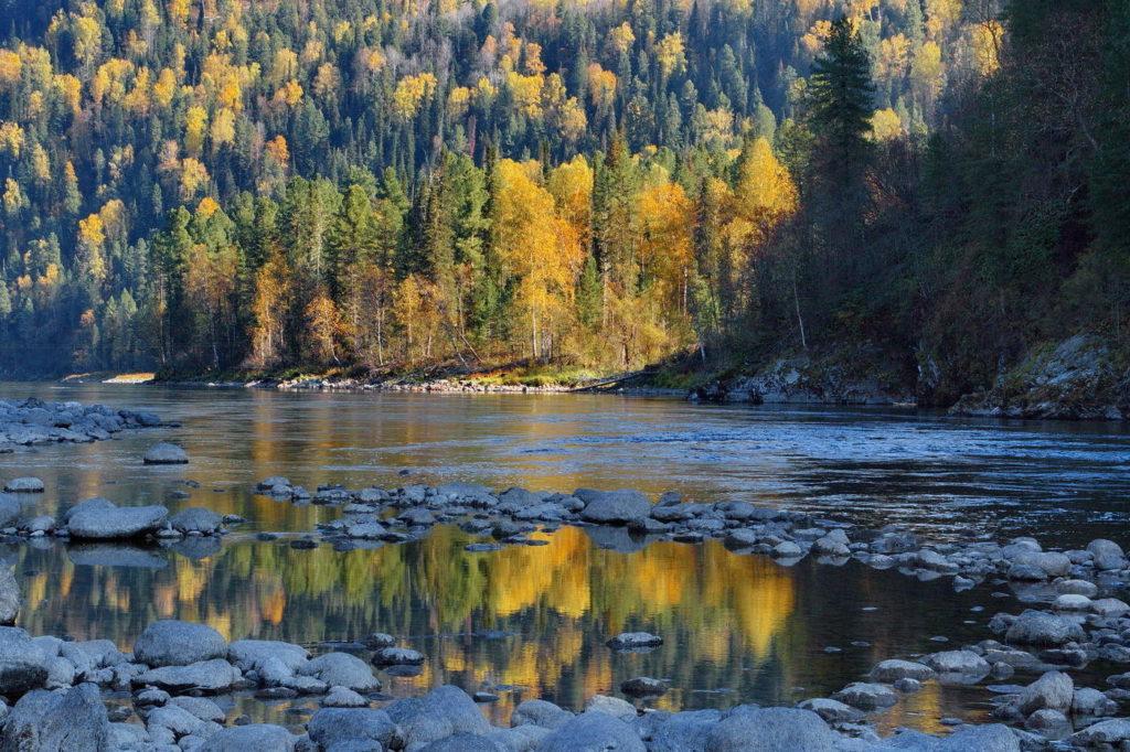 Река Бия Алтай