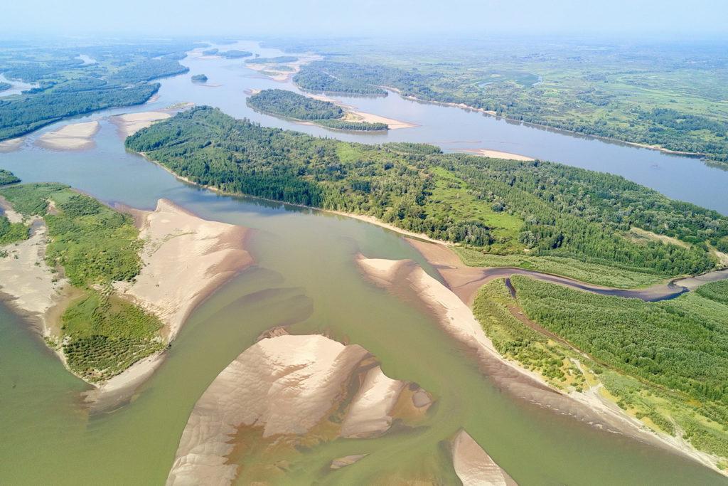 река Обь Алтай