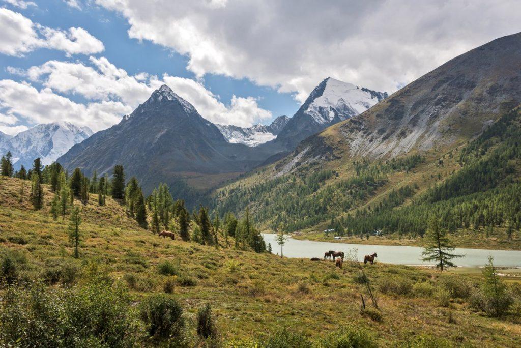 горы Алтайского Края