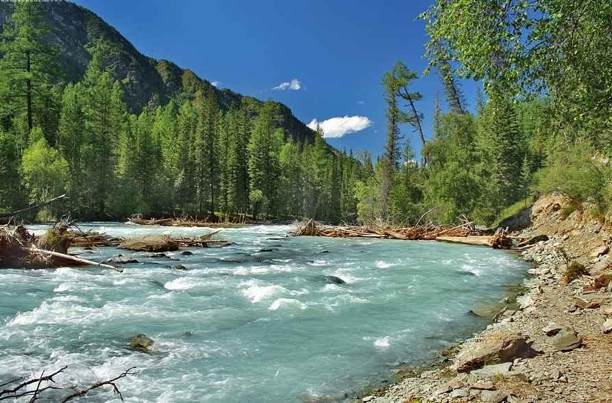Река Кучерла Алтай