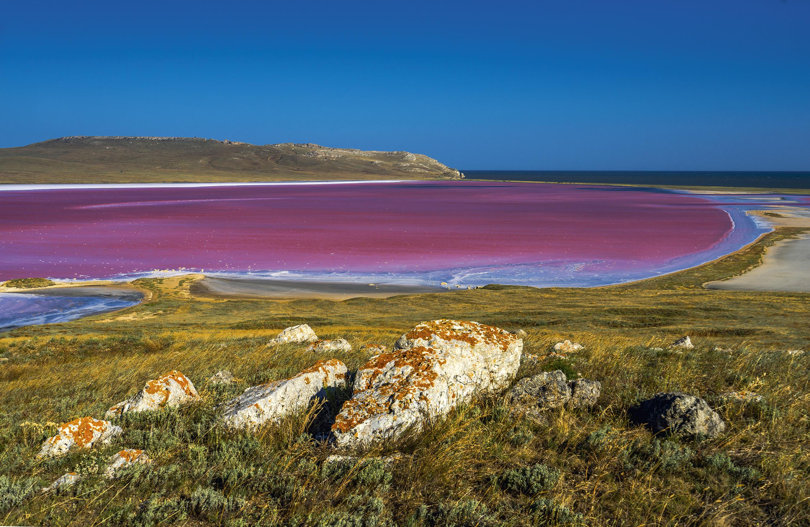 Фото розового озера в крыму